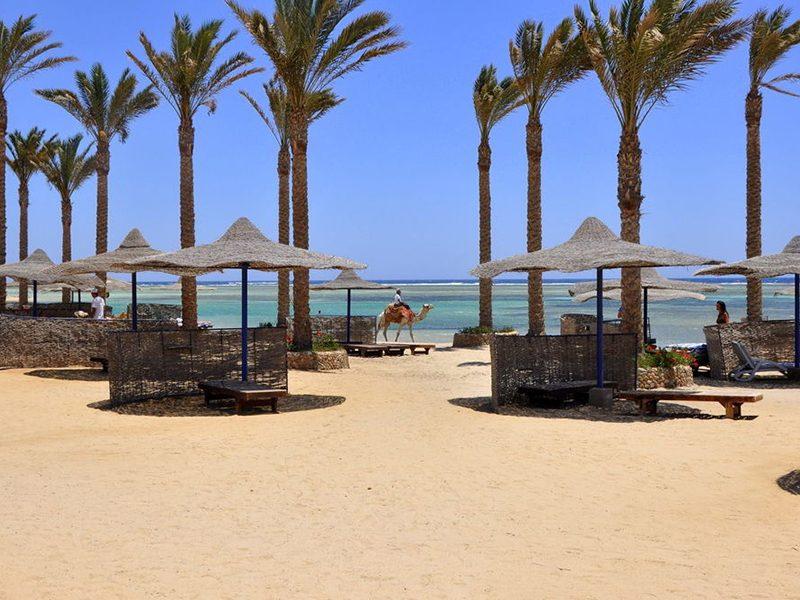 elphistone-resort-marsa-alam-25-mygn6cgksk1m3syepwq3sth5lsxt7oho4mj123cub4