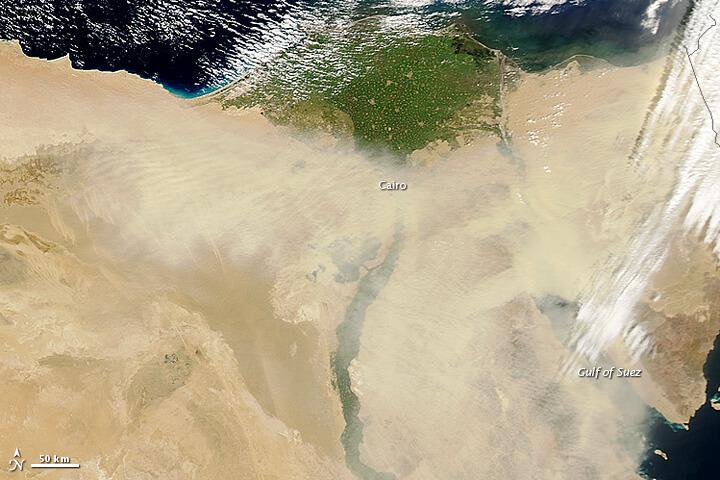 egypt_amo_2013081