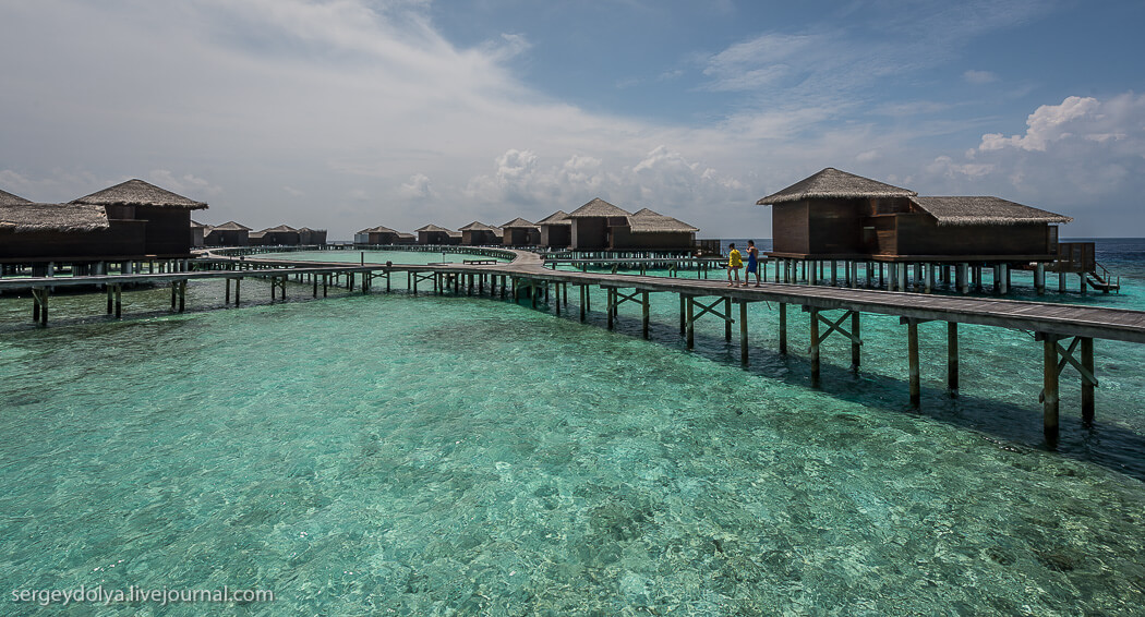 24_20141114_maldives_111
