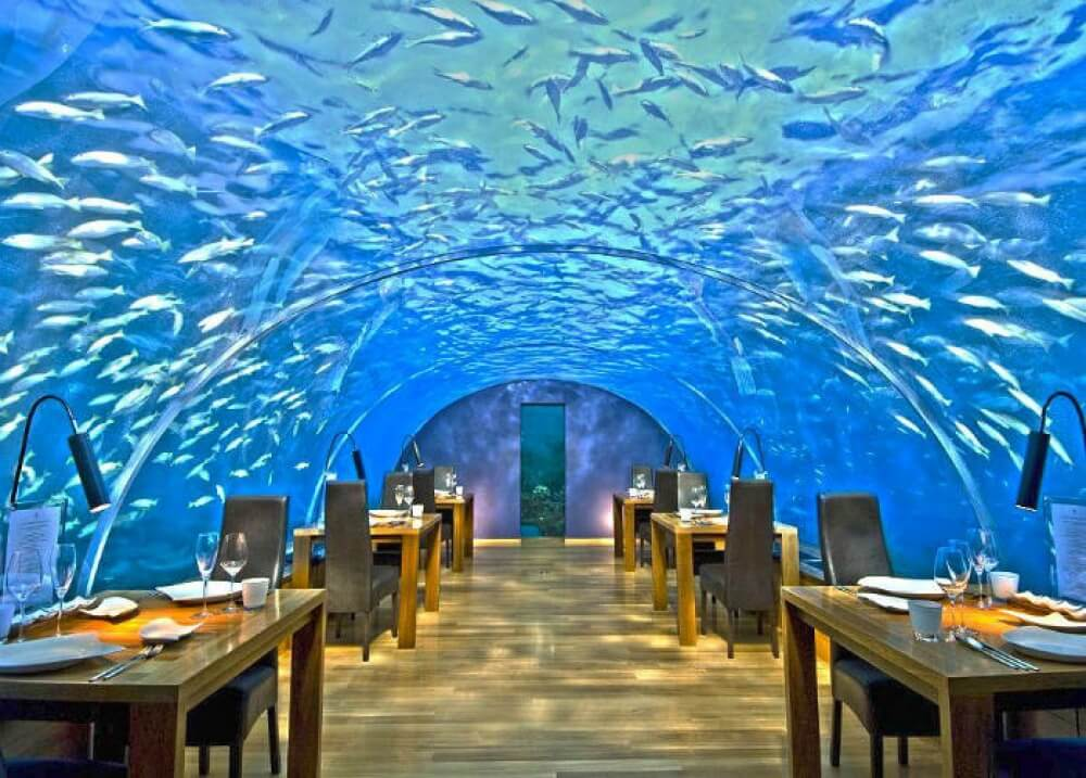2560810-R3L8T8D-1000-ithaa-undersea-restaurant