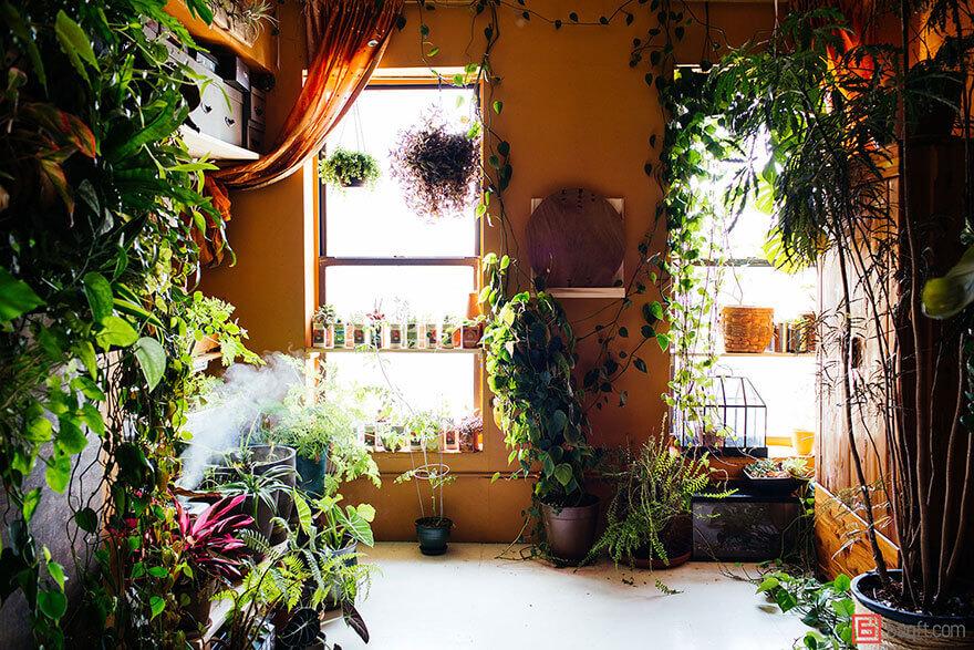 jungle-apartment-plants-summer-rayne-oakes-27 (1)