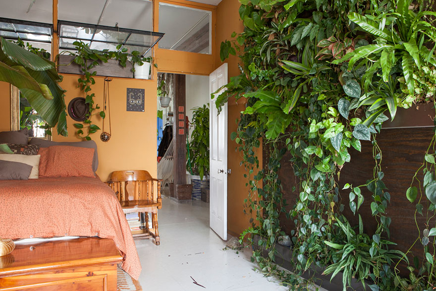 jungle-apartment-plants-summer-rayne-oakes-3