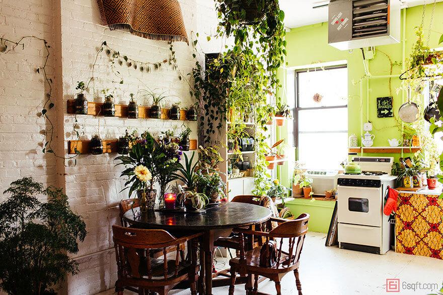 jungle-apartment-plants-summer-rayne-oakes-6 (1)