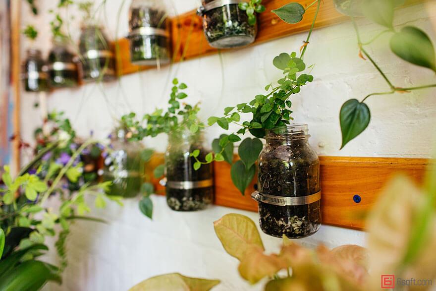 jungle-apartment-plants-summer-rayne-oakes-7