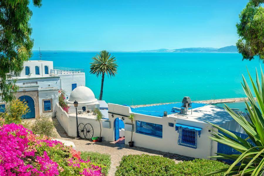 Туніс: цікаве про країну, тури та відпочинок: фото 1 - Antoniv